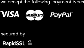 we accept Visa, Mastercard & PayPal using RapidSSL
